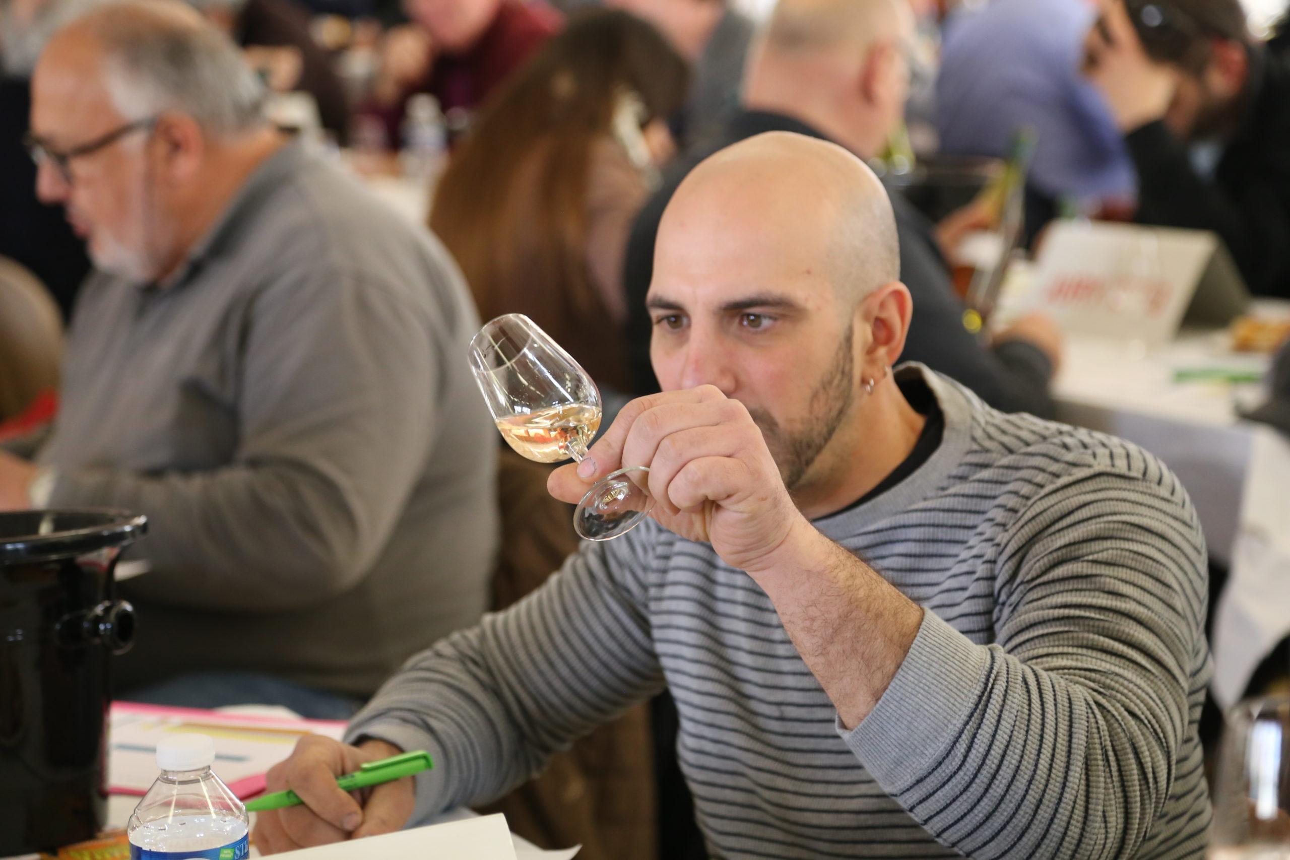 Le concours des vins est lancé !